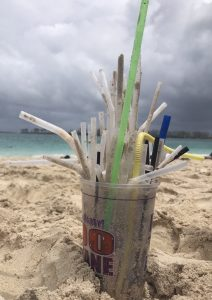 Florida Legislature Moves to Ban Local Straw Ordinances